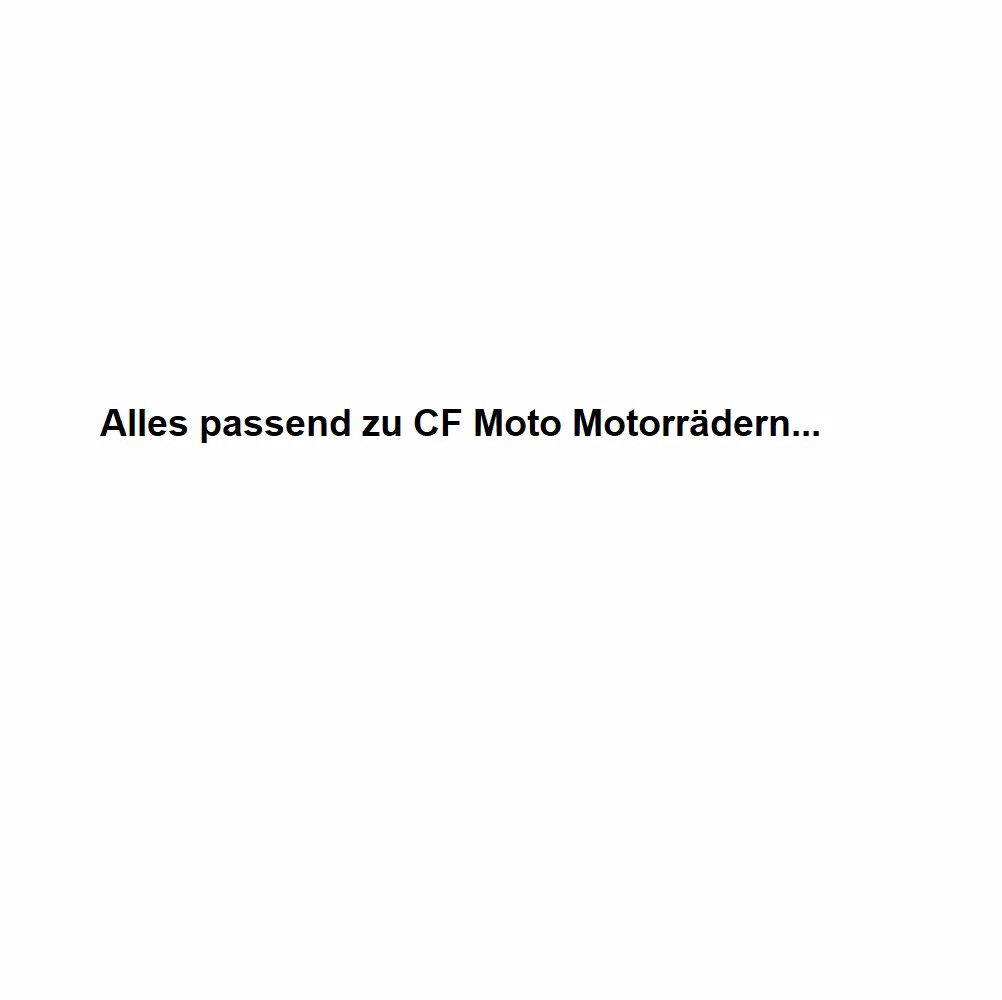 Picture for category Endtöpfe passend für CF Moto