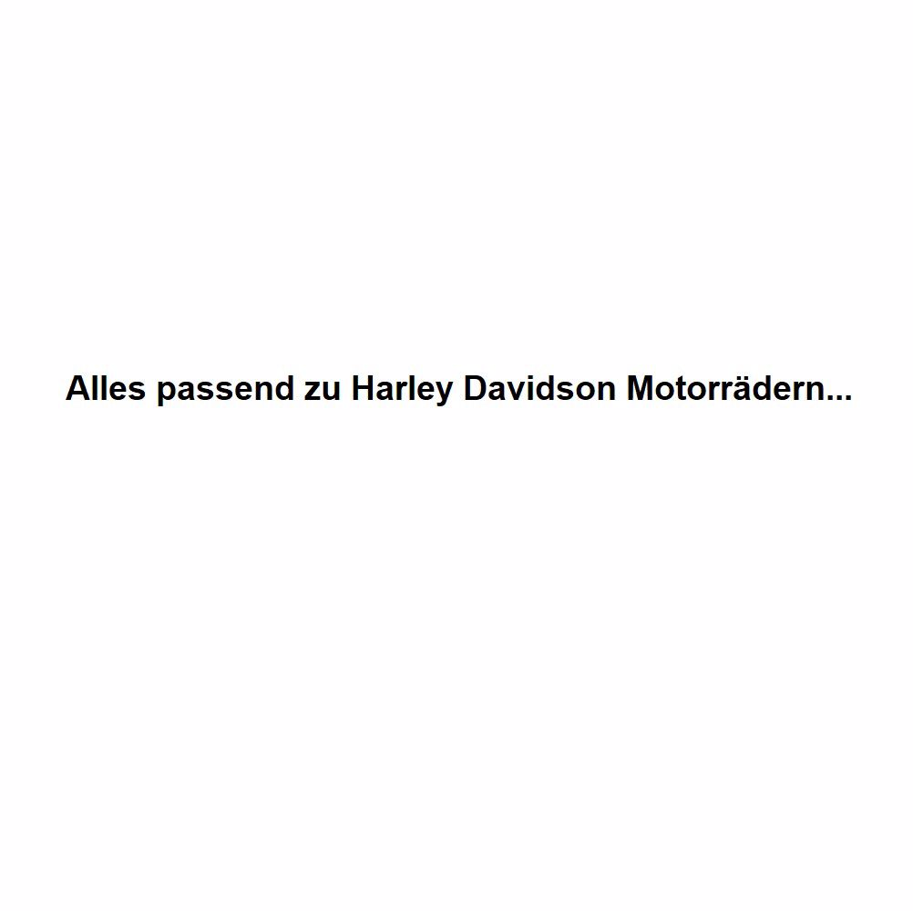 Bild für Kategorie Endtöpfe passend für Harley Davidson