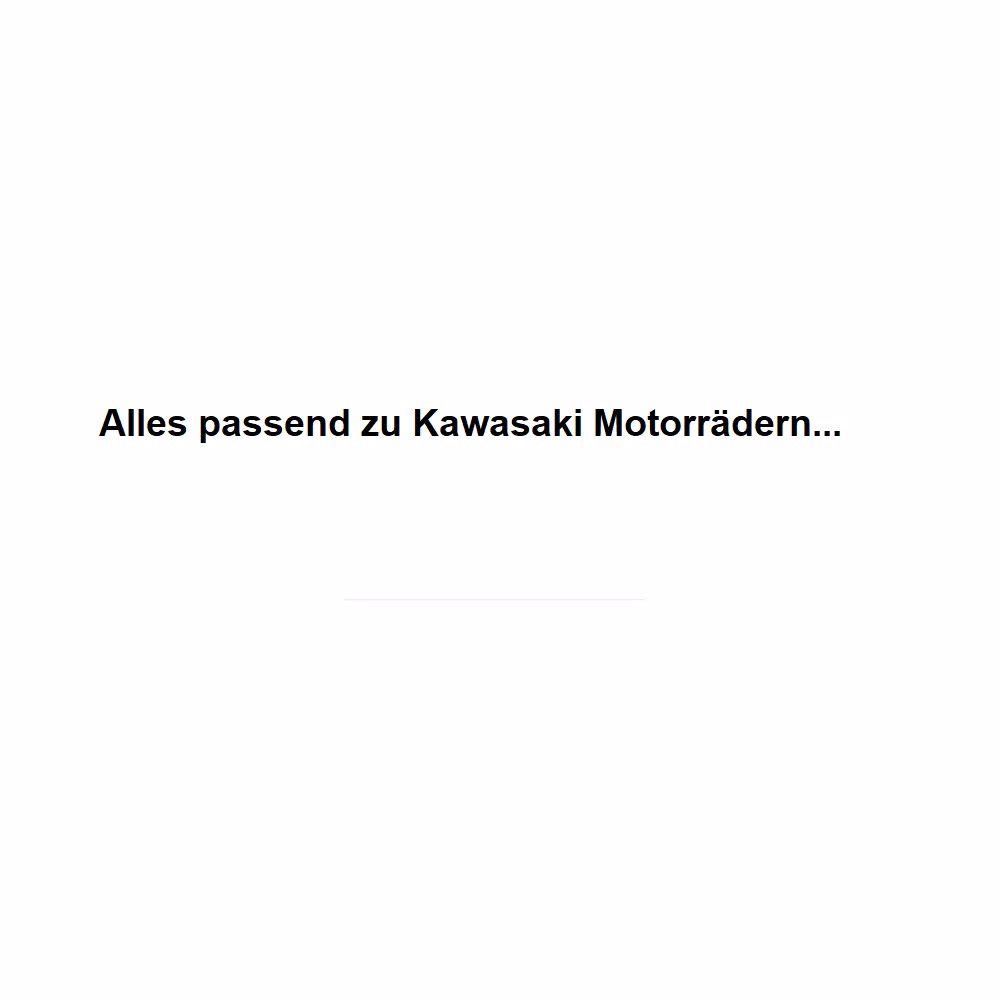 Bild für Kategorie Scheiben passend für Kawasaki
