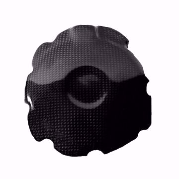 Picture of Carbon Racing alternator cover suitable for Honda CBR 1000